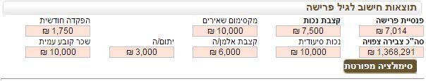 מחשבון פנסיה-תוצאות